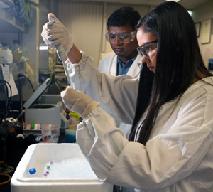 Vinod Valluri watches Jessica Valadez as she uses a pipette in the lab. Both are wearing white lab coats, gloves and safety goggles.