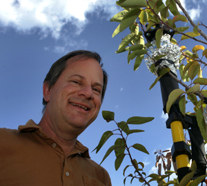 H. Jochen Schenk standing beside one of his test plants.