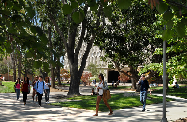 Csuf Climbs Higher In Rankings Of Top Public Universities